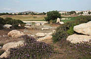 Golf fields 2801.jpg