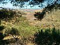 Gouves, Greece - panoramio (15).jpg