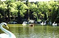 Gramado - Lago Negro - panoramio.jpg