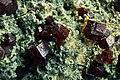 Granat, andradyt na hedenbergicie - Jiangxi, Nantan, Chiny..jpg