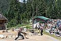 Grouse Mountain Lumberjack Single Buck competition (44673225942).jpg