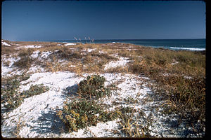Gulf Islands National Seashore GUIS1787.jpg