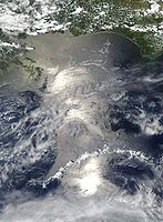 Oil Spill reaching the Gulf of Mexico