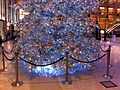 HK Central Landmark night Xmas tree Nov-2013 008.JPG