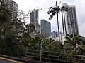 HK ML 半山區 Mid-levels 波老道 Borrett Road February 2020 SS2 18.jpg