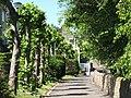 Hallorchard Road (2) - geograph.org.uk - 1490562.jpg