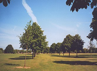 Ham Common, London - An avenue of lime tree leads towards Ham House