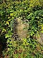 Hampstead Additional Burial Ground 20201026 084807 (50532614557).jpg