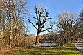 Hannover Herrenhausen 2014-I by-RaBoe 003.jpg