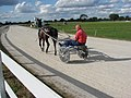 Harness racer in training . - geograph.org.uk - 548212.jpg