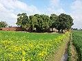 Hassan Wali, Pakistan - panoramio (1).jpg