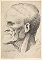 Head of an old man with a pronounced chin, short cropped hair and gaping mouth showing teeth in profile to left MET DP823726.jpg