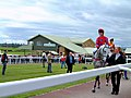 Hereford Racecourse - geograph.org.uk - 11229.jpg