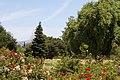 Heritage Rose Garden, San Jose - panoramio.jpg