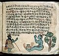 Hindi Manuscript 884 Wellcome L0024565.jpg