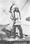 Hollow Horn Bear Edward Bates 1910.jpg