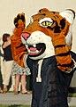 Holy Trinity Episcopal Academy Tiger Mascot.jpg