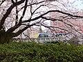 Honmachi, Toyama, Toyama Prefecture 930-0029, Japan - panoramio (13).jpg