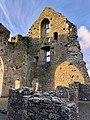 Hore Abbey, Caiseal, Éire - 32711826868.jpg