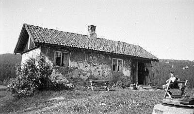 Hovseter, husmannsplass under Hoff gård. OB.Z01738.jpg
