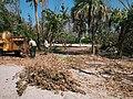 Hurricane Irma Cleanup (23543092458).jpg