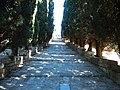 Ialisos, Greece - panoramio (15).jpg