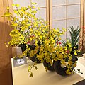 Ikebana International Paris 2019 (10).JPG
