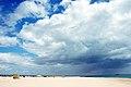 Ilha de Tavira (2456526479).jpg