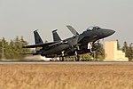 Incirlik receives F-15s in support of OIR 151112-F-GQ230-169.jpg