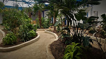 Insectarium And Butterfly Pavilion, Botanical Garden Construction, January  2017