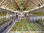 Inside the Boeing 747 (37088504613).jpg