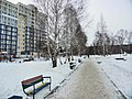 Irkutsk's Akademgorodok - panoramio (6).jpg