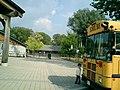 Island Public School - panoramio.jpg
