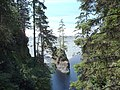 Island in Loss Creek - panoramio.jpg