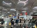 Istanbul Airport Jun 2020 19 42 12 857000.jpeg