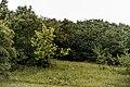 Izvoare – Risipeni, monument al naturii img 034.jpg