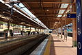 JP-Kanagawa-Sotetsu-Izumino-Station-Platform-Over-View.JPG