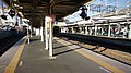 JR Tohoku-Main-Line Kuki Station Platform (Overall).jpg