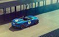 Jaguar - Project 7 (9283814846).jpg