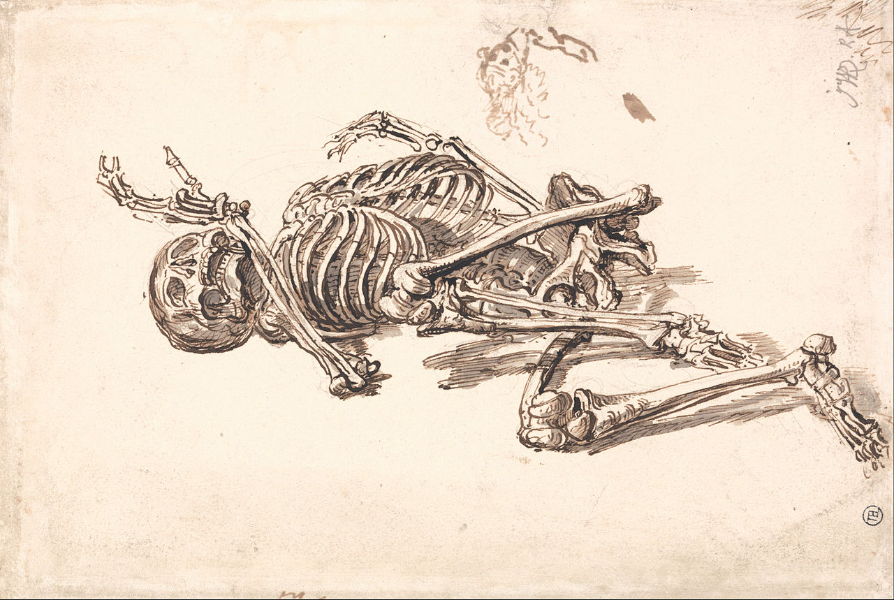 file:james ward - a human skeleton - google art project (2350893, Skeleton