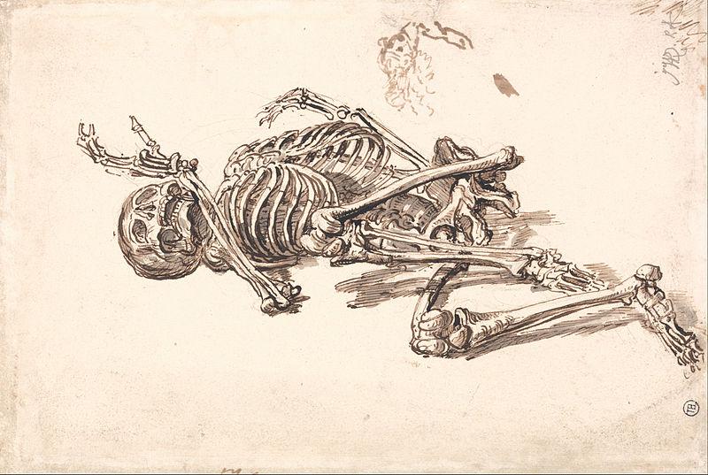 File:James Ward - A Human Skeleton - Google Art Project (2350893).jpg