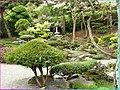 Japonská zahrada 6 - panoramio.jpg