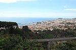 Jardim Botânico da Madeira - IMG 9624.jpg