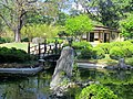 Jardim Japonês Jani Pereira (3).jpg