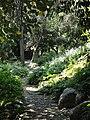 Jardin Serre de la Madone - DSC04035.JPG
