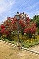 Jardins Alcazar reyes cristianos 2.jpg