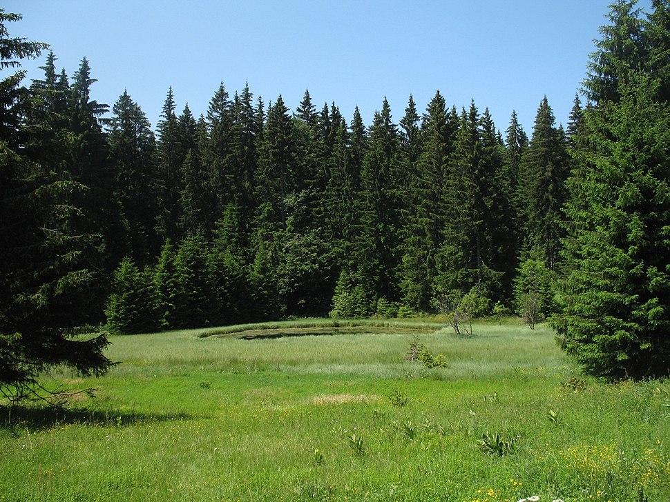 Jezero Ticar na Goliji