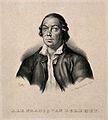 Johannes Le Francq van Berkhey. Lithograph by N.M.S. Wellcome V0000478.jpg