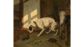 Joseph Stevens - Dog and turtle.png