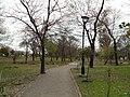 Kachnar park isloo 1-3-11 - panoramio.jpg